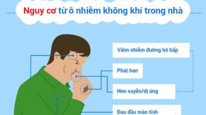 Không khí trong lành nhờ thiết bị lọc không khí trong nhà [Infographics]